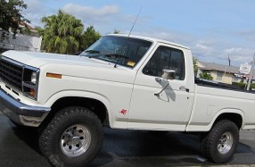 1981 Ford F100 Truck